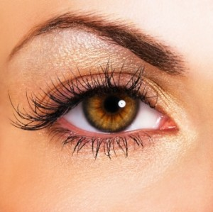 Beautiful Brown Eye with Long Eyelashes